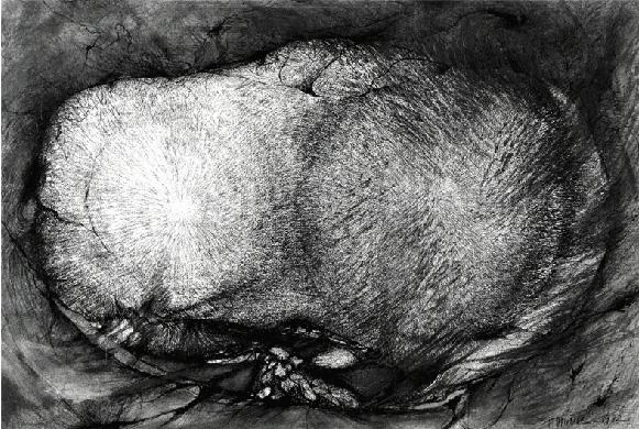 Tersa Muñiz. Sin título. Grafito sobre papel 107 cm x 70 cm 1978